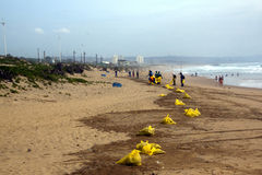 Municipal Workers Cleaning Debris on Beach in Durban, South Afri Stock Images