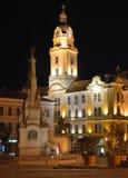 Municipio di Pécs con la statua di trinità Immagini Stock Libere da Diritti