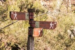 Muniellos自然保护,西班牙 免版税库存图片