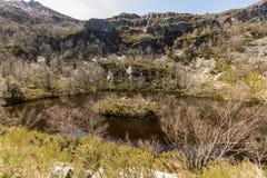 Muniellos Nature Reserve, Spain. Asturias, Spain. The Laguna la Isla Island Lagoon in the Muniellos Nature Reserve Reserva natural integral stock photography