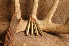 Munition mit 270 Gewehren Stockfotos