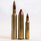 Munitions de fusil Images libres de droits