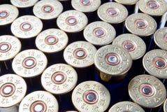 Munitions de fusil de chasse photographie stock libre de droits