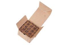 munizioni di 9mm in scatola Fotografia Stock Libera da Diritti