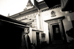 Munk av Drubgon Jangchup Choeling den tibetana templet, Katmandu, Nep Arkivbild