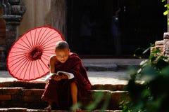 Munk i Bagan, Myanmar Arkivbilder