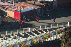 Munkar av buddism som går på Yarchen, Gar på morgonen, dem går till Royaltyfri Bild