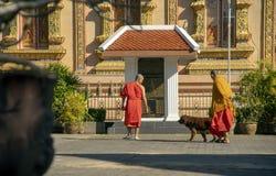 Munkar och hund framme av korridoren, Wat Sri Bun Rueang, Chiang Rai, Thailand royaltyfri bild