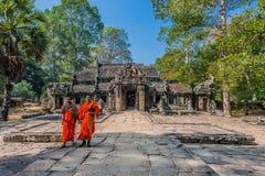 Munkar Ta Prohm Angkor Wat Cambodia Arkivbilder