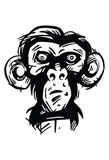Munkie,猴子 免版税图库摄影