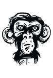 Munkie, обезьяна Стоковая Фотография RF