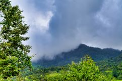 Munnar的有薄雾的山景城 免版税图库摄影