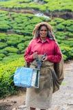 MUNNAR,印度- 2013年2月18日:一名未认出的印地安妇女 图库摄影
