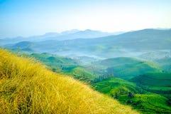 有薄雾的青山, Munnar 库存图片