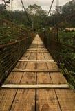 Munnar bro royaltyfria bilder