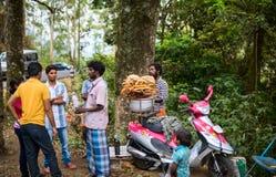 MUNNAR INDIA, LUTY, - 18, 2013: Niezidentyfikowani ludzie są dziąsłami Zdjęcie Stock