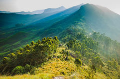 Munnar sunrise. Sunrise at Munnar tea plantaion, Kerala, India stock photos
