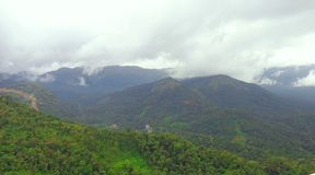 Munnar verde, Kerla, la India Imágenes de archivo libres de regalías