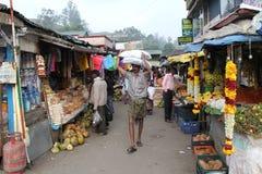 Munnar Royalty Free Stock Image