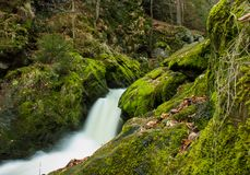 Munnen av den Doubrava floden Royaltyfri Fotografi