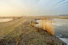 Munnikenpolder in Winter. The recreational area the Munnikenpolder near leiderdorp, the netherlnands in wintertime Royalty Free Stock Image