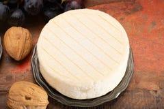 Munster ou Angloys pie, moite, doux, crémeux avec le goût fort, photos libres de droits