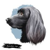 Munsterlander groß, deutsches erzeugendes Hundedigitales Kunst-Illustrationsporträt Profilnahaufnahme der Abzweigung des Zuchtrei stock abbildung