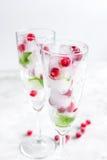 Munt en rode bessen in ijsblokjes op glazen witte achtergrond Royalty-vrije Stock Afbeeldingen