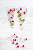Munt en rode bessen in ijsblokjes op glazen witte achtergrond Stock Afbeelding