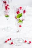 Munt en rode bessen in ijsblokjes op glazen witte achtergrond Royalty-vrije Stock Foto