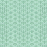 Munt-groen-achtergrond Royalty-vrije Stock Foto
