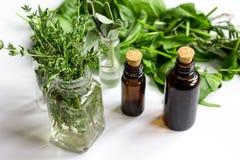 Munt, salie, rozemarijn, thyme - aromatherapy witte achtergrond royalty-vrije stock foto's