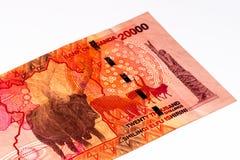 Muntbankbiljet van Afrika Stock Fotografie