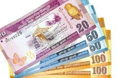 Muntbankbiljetten over de lankan Roepie van kadersri in diverse benaming worden uitgespreid die stock fotografie
