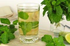 Muntblad, aromatische kruiden royalty-vrije stock foto