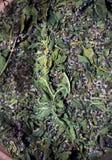 Muntbladeren droog in een kruik stock foto