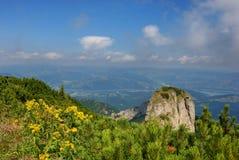 Munteluiceahlau van het landschap izvorul Stock Foto's