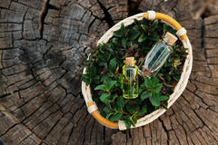 Muntolie en geurige essentie in kleine flessen met pepermunt l royalty-vrije stock foto's