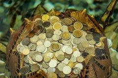 muntstukken Stock Foto