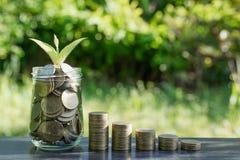 Muntstukken en jonge plant het groeien op de grond voor besparing of aard c Stock Afbeeldingen