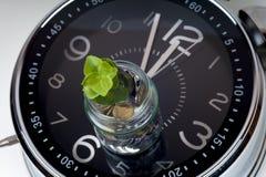 Muntstukken met installatie en klok, op witte achtergrond 3d illustratie op witte achtergrond Royalty-vrije Stock Foto