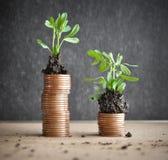 Muntstukken met jonge planten in grond Het concept van de geldgroei royalty-vrije stock foto's