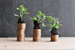 Muntstukken met jonge planten in grond Het concept van de geldgroei royalty-vrije stock fotografie
