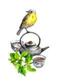 Muntthee, theepot, koppen en vogel watercolor Royalty-vrije Stock Afbeelding