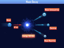 Muon Decay Stock Photos