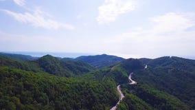 Muovendosi indietro a partire dalla foresta di legni di pino e dalla montagna rocciosa nel giorno di estate Natura verde all'aper archivi video