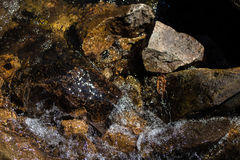 Muoversi naturale di area del fiume della montagna della roccia Fotografia Stock Libera da Diritti