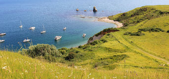 Mupe bay with yachts Royalty Free Stock Photography