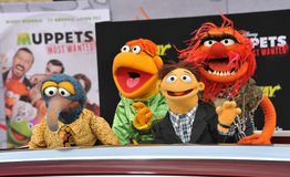 Muppets characters. LOS ANGELES, CA - MARCH 11, 2014: Muppets characters at the world premiere of their movie Disney's Muppets Most Wanted at the El Capitan Stock Images