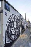 Mur Роза Паркс покрашенная с искусством улицы известными muralists в Париже Стоковые Изображения RF